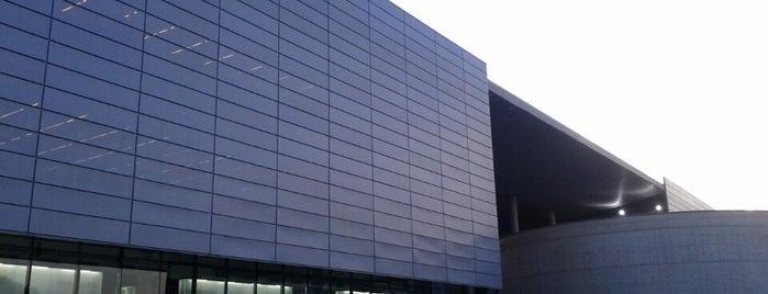 Biblioteca Brasiliana Guita e José Mindlin is one of Sampa 460 :).