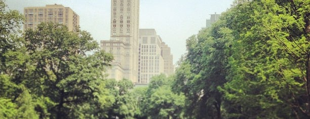 Central Park is one of NY See.