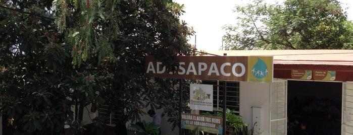 ADOSAPACO is one of Locais curtidos por Restaurante Catedral.