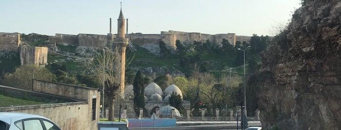 Balıklıgöl Dergah is one of สถานที่ที่ Pelin ถูกใจ.