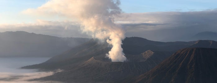 Bromo Savanna is one of Welcome to Malang!.