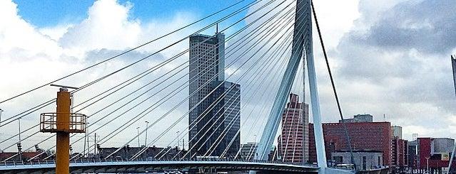 City Marina Rotterdam is one of AMSTERDAM.