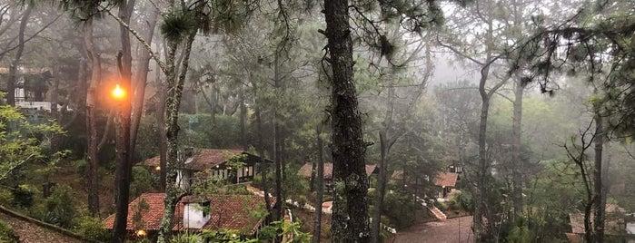 Villas Mazamitla Hotel de Montaña y Cabañas is one of Víctorさんのお気に入りスポット.