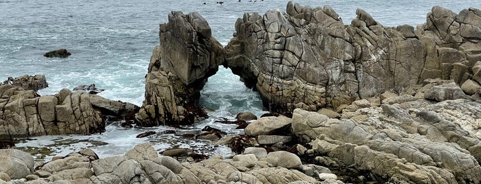 Monterey Peninsula Recreational Trail is one of Best of Monterey.