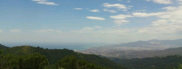 Parque Natural Montes de Málaga is one of Qué visitar en Málaga.