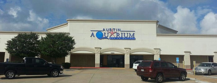 Austin Aquarium is one of Austin Activities.