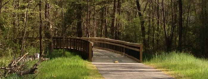 Neuse River Greenway Trail @ Anderson Point Park is one of RDU Baton - Raleigh Favorites.