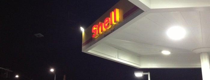 Shell is one of Lennart : понравившиеся места.