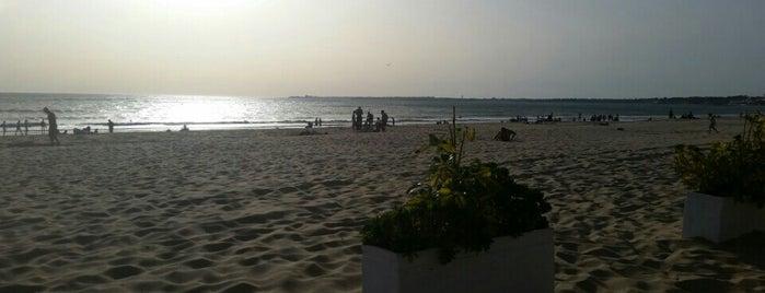 Playa de Vistahermosa is one of Orte, die zityboy gefallen.