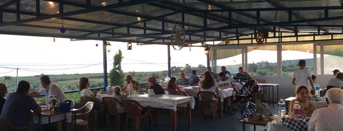 Balıkçı Erdo'nun Yeri is one of Gidilecek.