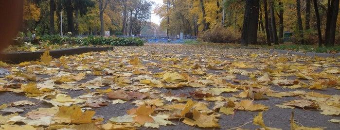 Центральний міський Парк is one of Чернигов Must Go list.