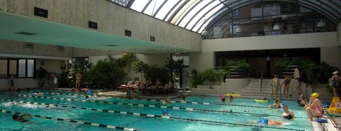Manhattan Plaza Health Club (MPHC) is one of NYC Pools.