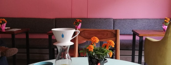 Deseo Café De Especialidad is one of 150Roma.