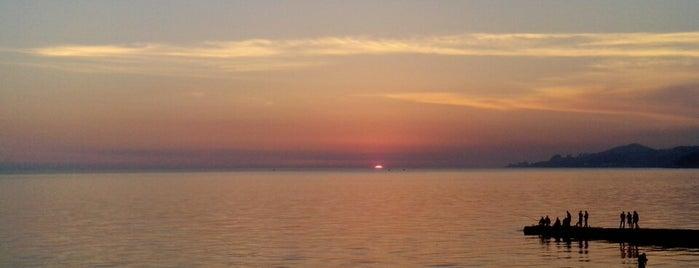 У самого Чёрного моря! ;-)