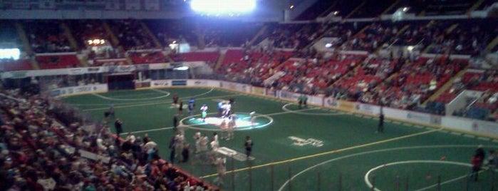UW-Milwaukee Panther Arena is one of Milwaukee's Best Spots!.