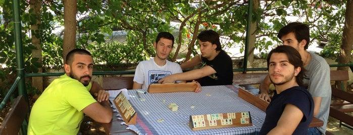 Tek-İş Siteleri is one of Locais curtidos por Orhan.