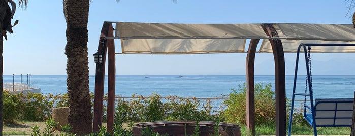 Karpuzkaldıran Kampı is one of Tempat yang Disukai 🇹🇷.