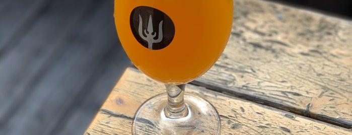 Wayfinder Beer is one of Locais curtidos por Haley.