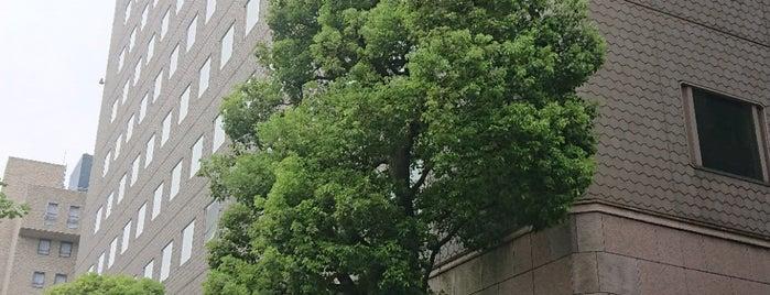 The Chugoku Electric Power Co., Inc. is one of Lugares favoritos de 高井.
