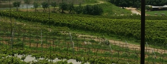 Monsoon Valley Vineyard is one of On the Hua Hin.