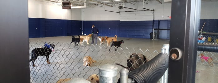 The Woof Dog Daycare & Boarding is one of Linda 님이 좋아한 장소.