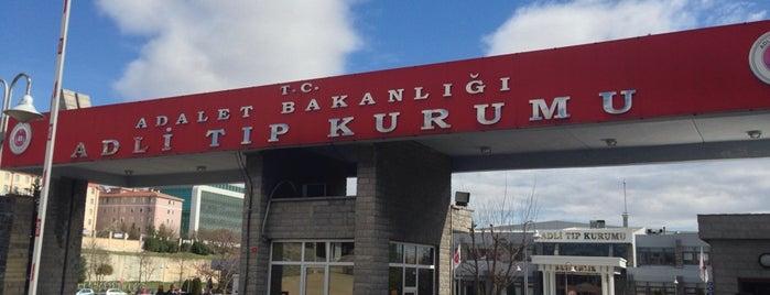 İstanbul Adli Tıp Kurumu Başkanlığı is one of Posti che sono piaciuti a ENES.