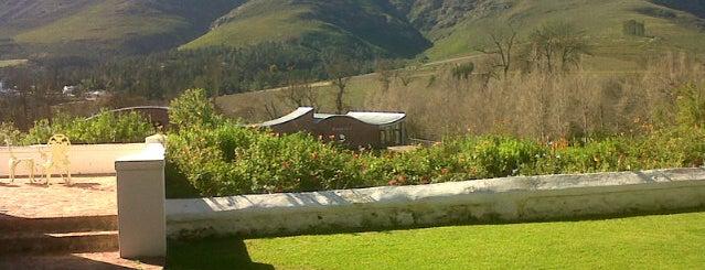 Dornier Wines is one of Stellenbosch.