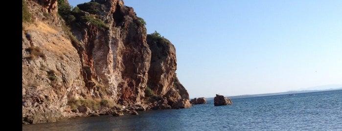Fox Beach Club is one of Balıkesir Plajları.