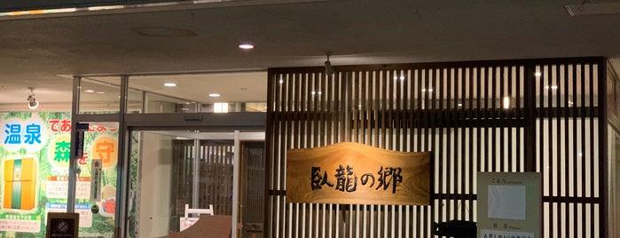 臥龍の郷 is one of สถานที่ที่ Mi=Go ถูกใจ.
