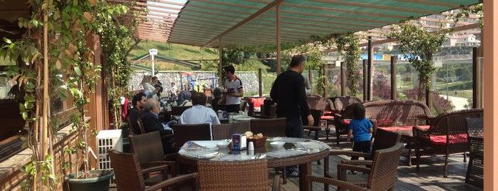 Serender Cafe is one of Aynur'un Beğendiği Mekanlar.