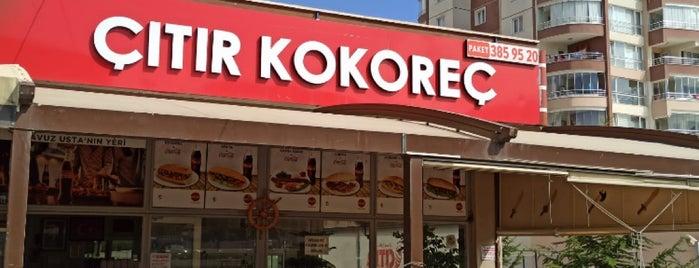 Çıtır Kokoreç is one of สถานที่ที่ Fatih ถูกใจ.