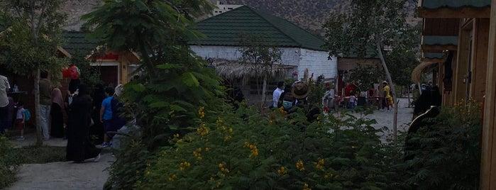 مزرعة الفراولة is one of Locais salvos de Soly.