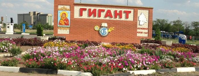 Гигант is one of Города Ростовской области.