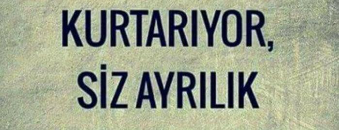Manzaralı Sessiz Bir Yer is one of Locais curtidos por Özcan Emlak İnş 👍.