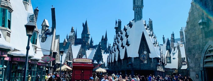 Harry Potter and the Forbidden Journey is one of Lieux qui ont plu à Erin.