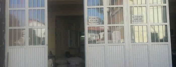 Kuşçular Kahvesi is one of ✨ ✨✨✨ : понравившиеся места.