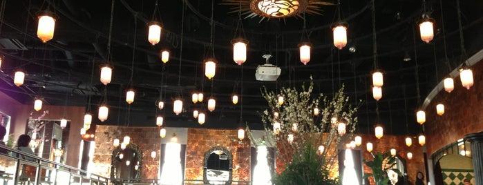 レガート is one of Topics for Restaurant & Bar ⑤.