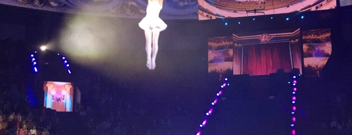 The Moscow State Circus is one of Posti che sono piaciuti a Anton.