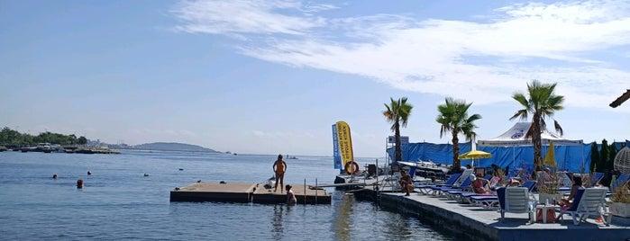 Suadiye Marina Beach is one of Discover Kadıköy 2.
