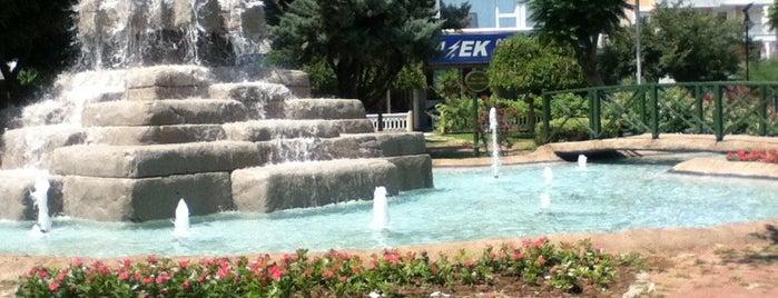 Park is one of Konul 님이 좋아한 장소.