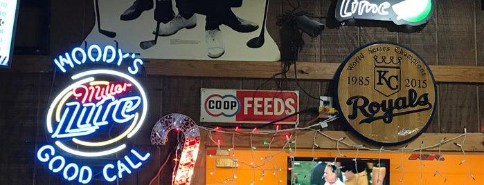 Woody's Pub and Grub is one of สถานที่ที่ Erica ถูกใจ.
