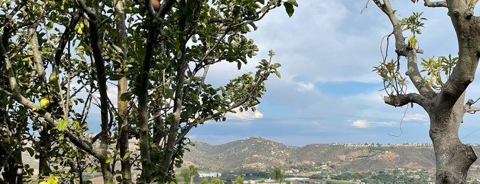 Sunshine Mountain Vineyard is one of San Diego Wine Country.