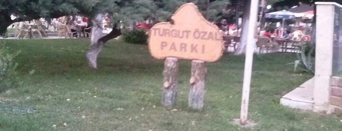 Turgut Özal Parkı is one of สถานที่ที่ Onur ถูกใจ.