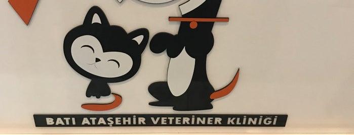 Bati Atasehir Veteriner Klinigi is one of Atasehir'de yaşam.