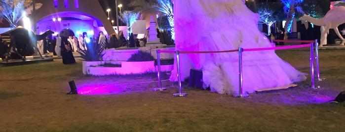 King Faisal Park is one of الطائف.