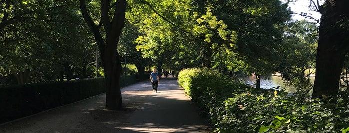 Bellevue-Ufer is one of Berlin.