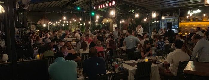 Şerefe Balık is one of Locais curtidos por Ipek.