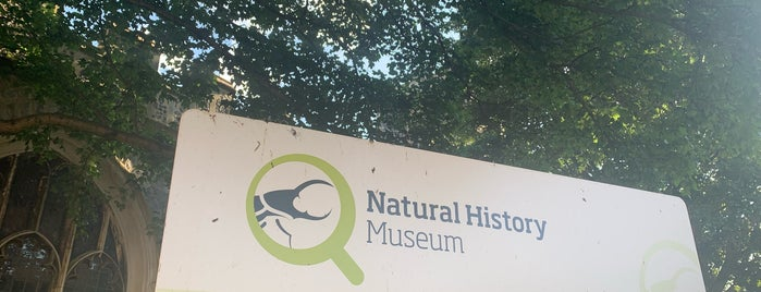 Natural History Museum is one of London/Oxford.