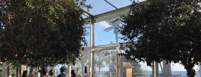 The Bungalow Santa Monica is one of Santa Monica.