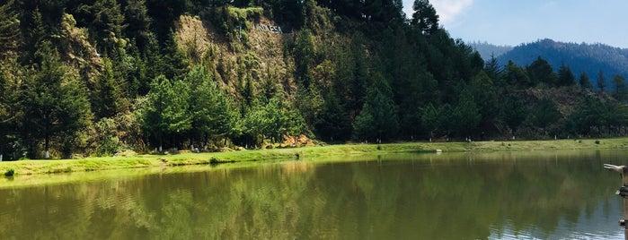 cabaña del lago is one of Posti che sono piaciuti a Frida.